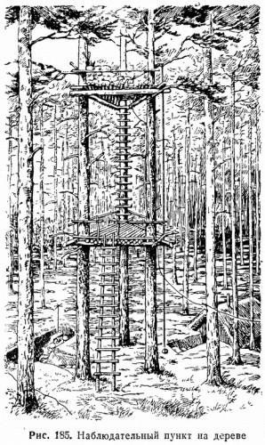 Рис. 185 Наблюдательный пункт на дереве
