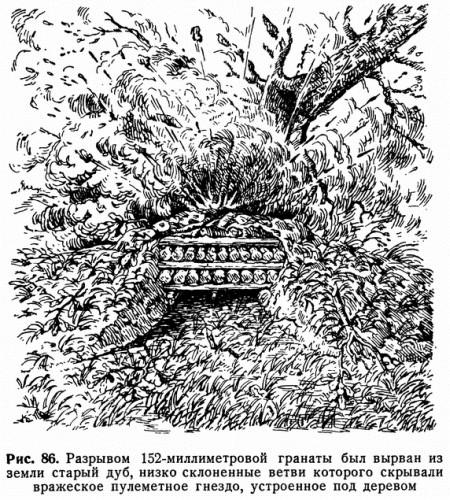 Рис. 86. Разрывом 152-миллиметровой гранаты был вырван из земли старый дуб, низко склоненные ветви которого скрывали вражеское пулеметное гнездо, устроенное под деревом